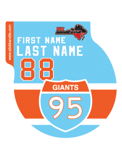95 Giants Hockey