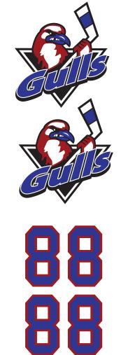 Long Island Gulls Hockey