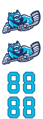 Piedmont Predators Hockey Team