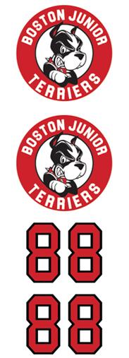 Boston Jr Terriers 3