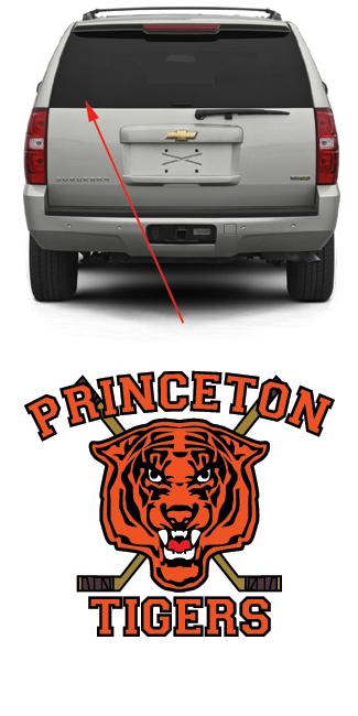 Princeton Tigers Hockey