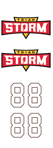 New Triad Storm Hockey