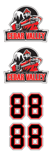 Cedar Valley Hockey