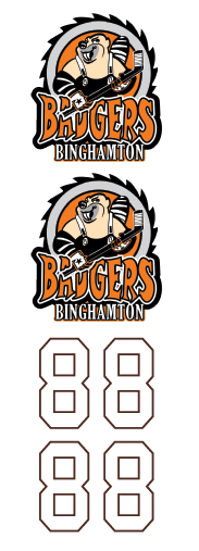 Binghamton Badgers Hockey