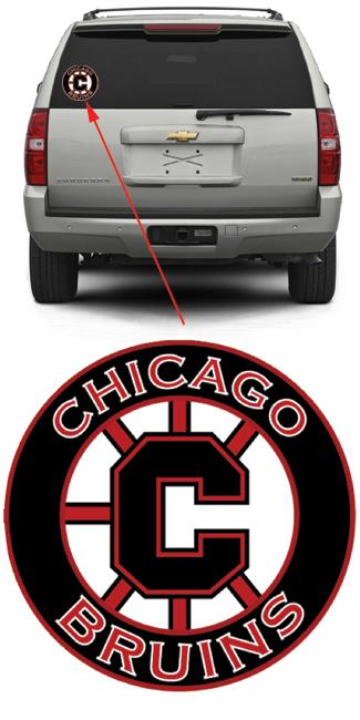 Chicago Bruins Hockey