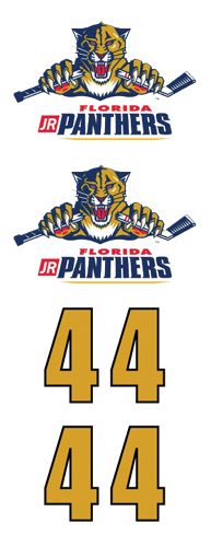 Flordia Jr. Panthers Hockey