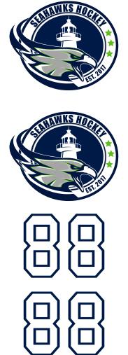 Seahawks Hockey