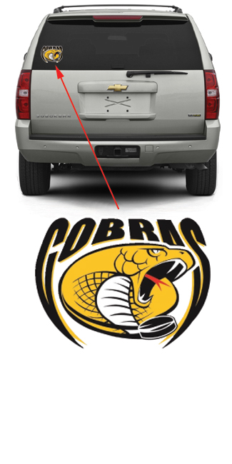 St. Louis Cobras Hockey