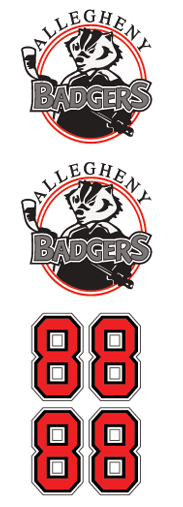 Allegheny Baders Hockey