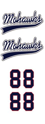 Niskayuna-Schenecatdy-Albany Mohawks