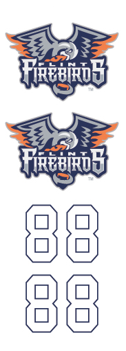 Flint Firebirds Hockey