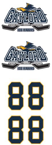 Gaylord Ice Hawks Hockey