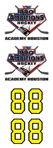 Pro Ambitions Academy Houston