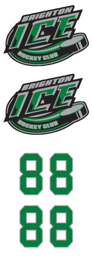 Brighton Ice Hockey Club