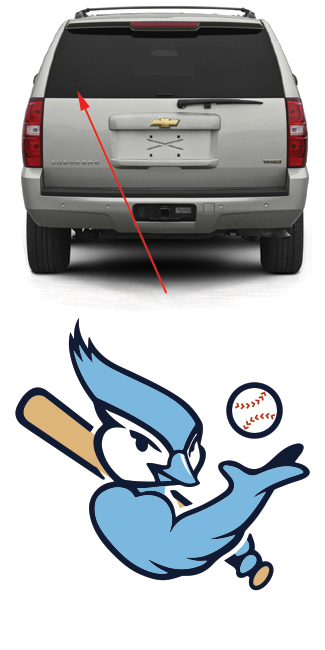 Bluebird Baseball