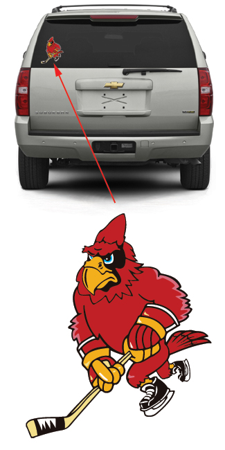 Cardinal Hockey Team
