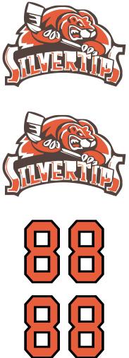 Winnipeg Silvertips