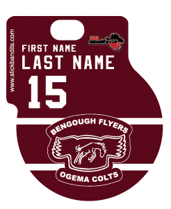 Bengough Flyers Ogema Colts