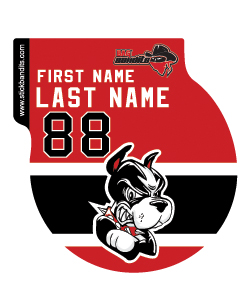 Boston Jr. Terriers