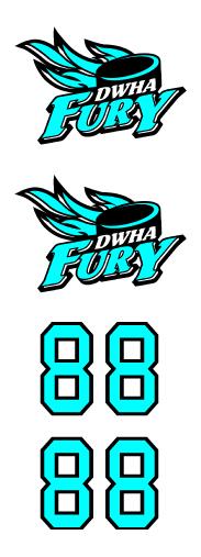 DWHA Fury