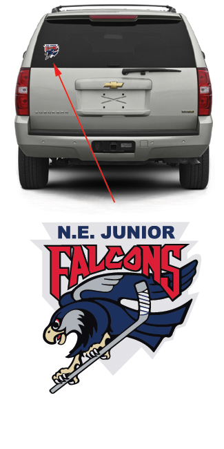 N.E. Junior Falcons Hockey