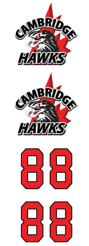 Cambridge Hawks Hockey Club