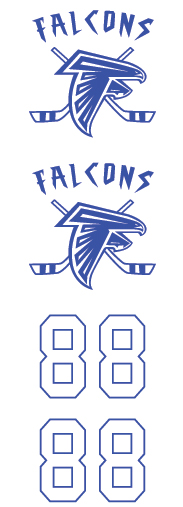 Danvers Falcons Youth Hockey