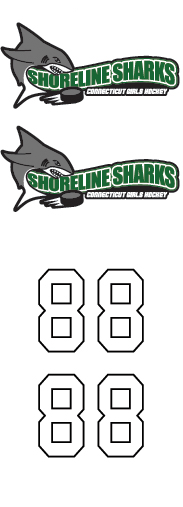 Shoreline Sharks Girls Hockey