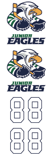 Surrey Junior Eagles