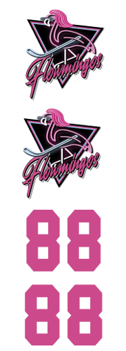 Flowningos Hockey