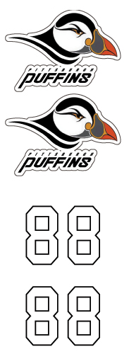 Pittsburgh Puffins Hockey