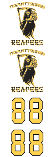 Pittsburgh Reapers