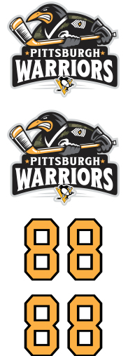 Pittsburgh Warriors