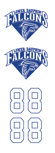 Lower Dauphin Falcons Hockey