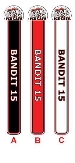 Brantford Ice Cats Hockey