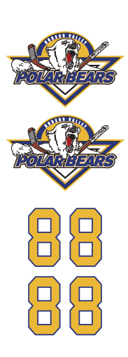 Hudson Valley Polarbears Hockey