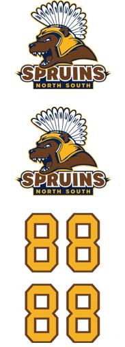 Fargo North South Spruins