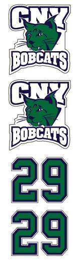 CYN Bobcats Hockey
