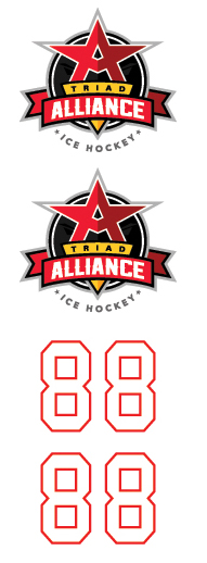 Triad Alliance Ice Hockey