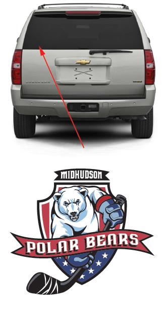 Mid Hudson Polar Bears