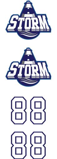 Saugeen Shores Storm