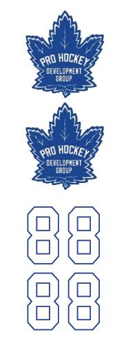 Pro Hockey Development