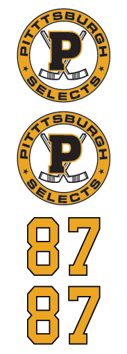 Pittsburgh Selects Hockey