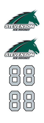 Stevenson Ice Hockey
