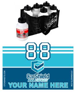 CarShield