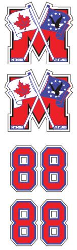 MTMHA Jr. Flags Hockey Club