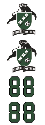 Mehville Panthers 2