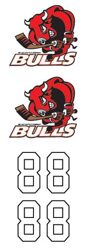 MP Jax Cattle Company Bulls
