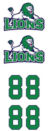 Lions Hockey