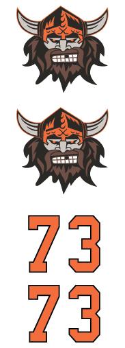 Vikings Hockey Club